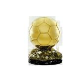 Trophée Ballon d'Or