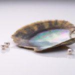 Première perle sphérique